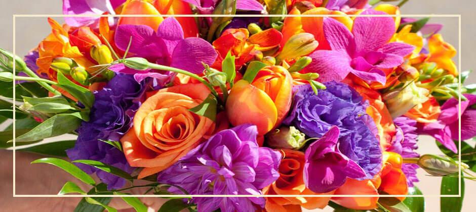 Květomluva aneb symbolika květin