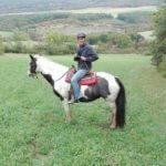 stips jizda na koni