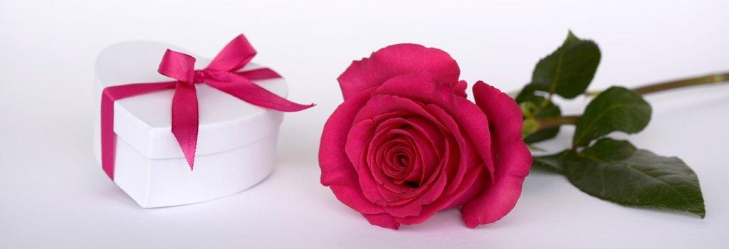 rose-2019690_1280